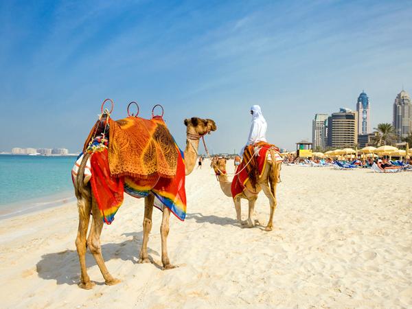 ドバイのビーチ巡りは海水がお湯になる前に!?