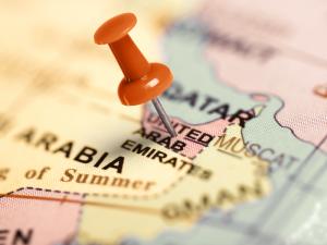 UAEは明日で45才<br>盛大に祝われるUAE建国記念日の画像